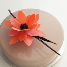 Zumbo's Just Desserts, Fancy Desserts, Fancy Cakes, Chocolate Flowers, Chocolate Art, Cake Decorating Techniques, Cake Decorating Tips, Mirror Glaze Cake, Pastry Shop