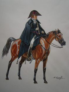 Duke of Wellington, Waterloo 1815