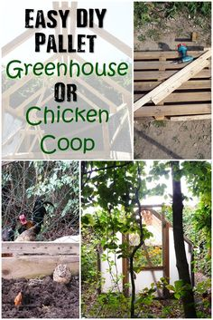 Easy DIY Pallet Greenhouse Or Chicken Coop - This multi purpose DIY project can serve as a great greenhouse or chicken coop. Easy to build for a very frugal price! There are loads of garden DIY projects on the web, the difference between this and others is that this is a multi purpose garden addition, You can add a cover to the structure and have it a green house and take it off and use it as a chicken coop.