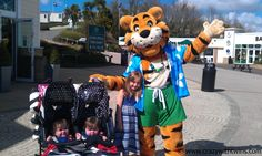 Haven's Rory the Tiger