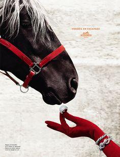 Hermes mainos. Idea kohdillaan, timantteja hevoselle!