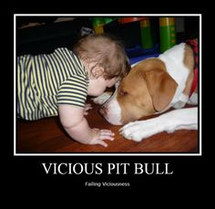 #PitBull #ViciousFail See more and submit your own at www.facebook.com/pitbullsagainstmisinformation