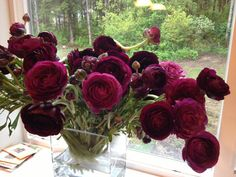 Recap of the Flirty Fleurs Floral Design Workshop that features some of the beautiful Florabundance flowers. Shown: Burgundy Ranunculus