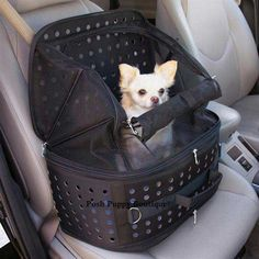 Ultimate Traveler Pet Carrier - Carriers - Canvas Style Carriers Posh Puppy Boutique
