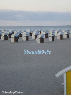 Schwedenpilzchen: Ostsee