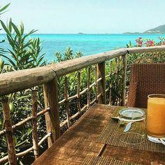 Blue Skies, Warm Sunshine, Fresh Orange Juice. .. Sounds like a good wakeup call! #cocobayresort #loveantiguabarbuda #paradise #caribbean #travel #repost #nature #naturelovers #vacation #goodmorningpost #instagood #photooftheday #tflers