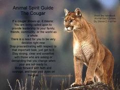 "It was my understanding that the term ""spirit guide"" is appropriation, but otherwise this is relevant to my interests."