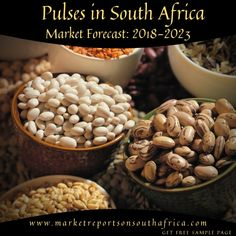 Pulses in South Africa Financial Position, Foreseeable Future, Market Research, South Africa, Protein, Beverages, Traditional, Food, Essen