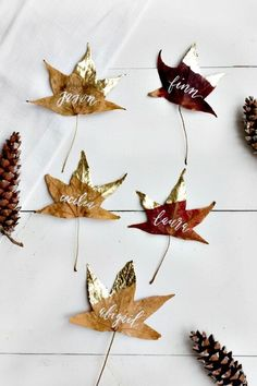 Gold Dipped Leaves: Dog-eared in gold leaf, these simple place cards require little more than collecting a freshly-fallen batch of leaves. Click through for more DIY place card ideas perfect for Thanksgiving. Thanksgiving Diy, Thanksgiving Place Cards, Thanksgiving Table Settings, Thanksgiving Centerpieces, Easter Centerpiece, Cheap Thanksgiving Decorations, Centrepiece Ideas, Friends Thanksgiving, Thanksgiving Pictures