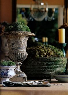 Fresh Spring Decorations Ideas - Decorate And Tinker With Moss_22 love the contrast between the moss and the weathered urn...