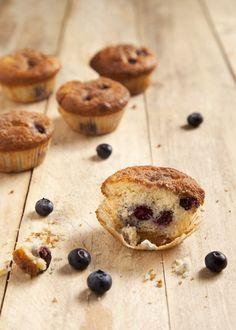 muffin al mirtillo bluberry muffin #muffin #bluberrymuffin #idolcettidipaola #leitv