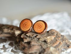 Wooden earrings natural larch ear studs sterling by MyPieceOfWood