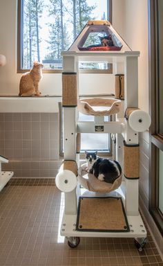 Testimonials - CRIJO Pet Products - The High Quality Equipment for Pets #Crijo #cats #CatTree