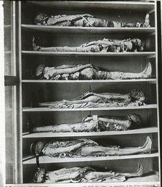 Stacked Mummies