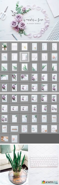 Lavender Blogger Bundle  stock images