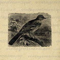Printable Image Mocking Bird Digital by VintageRetroAntique