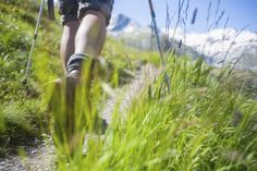 New research suggests nature walks are good for your brain - The Washington Post
