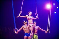 Cirque du Soleil, Totem, Rings Trio. Best act ever.