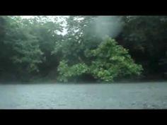 Sons da Natureza - Chuva no Rio (1 hora) - Para Relaxamento, Meditação, ...