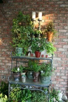 Marsha's Creekside Creations: Spring Plants and Porch Balcony Garden, Herb Garden, Garden Pots, Garden Bar, Bakers Rack Decorating, Porch Decorating, Decorating Ideas, Patio Plants, Indoor Plants