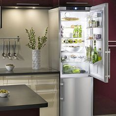 "Apartment style fridge 24""x 80"" tall. Great for tight spaces or an awesome butlers pantry, beverage center, bar, etc."