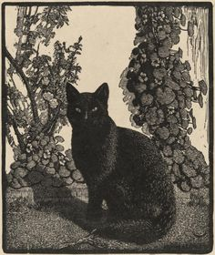 How ArtisTitle: The Black Cat Artist: Lionel Lindsay Date: 1922 Medium: Wood Engraving Size: 18.2 × 15.3 cm Source: National Gallery of Victoriats See Animals