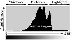 understanding digital camera histograms: tones and contrast