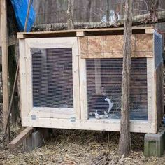We often talk about preparing our chickens and other livestock for Winter, but rarely about preparing our rabbits. It could be the fact that rabbits are pretty resilient when it comes to winter weather, but believe it or not, they. Raising Rabbits For Meat, Meat Rabbits, Bunny Hutch, Rabbit Eating, Mother Earth News, Backyard Farming, Hobby Farms, Winter Garden, Livestock