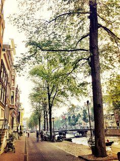 amsterdam - been