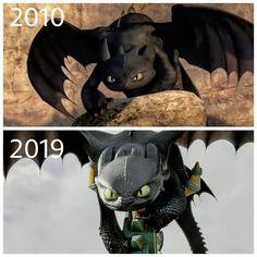 dragoncup Httyd Dragons, Dreamworks Dragons, Dreamworks Animation, Disney And Dreamworks, Got Dragons, How To Train Dragon, How To Train Your, Dragon Defender, Night Fury Dragon