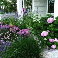 Did someone say Purple....#cottagegarden @coastalliving #puremichigan #summer #flowers #hydrangea #frontyard #interiordesign #landscape #love #beautiful #picoftheday #pictureoftheday #followme #design #purple by chathamhouseinteriordesign