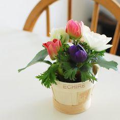 【店長コラム | 今日の花】バターのパッケージがあまりにもかわいいから。