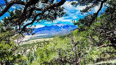 Colorado Hiking View by Debra Martz This photo was taken while hiking on the northern side of the Great Sand Dunes National Park