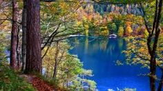 Landscapes Forest Seasons Lakes Water Fall Architecture Houses Leaves Trees Autumn