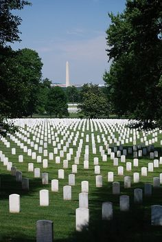 the most humbling place I have ever     been,, walked in from washington dc, through the gates, and right away, the     statues and memorials are amazing....then... you see them,,, ....acres and     acres....fields and fields of small white headstones.  Amazing !     A section     for each battle,,, and the growing numbers that are buried on a daily basis...     if you leave here with a dry eye   you have no heart !