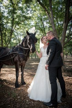 Gauteng Wedding, Portraits & Event Photographer Capturing adventurous love stories, events and portraits allover South Africa since Based in Boksburg, Gauteng. Event Photographer, Love Story, Our Wedding, Wedding Photography, Horses, Weddings, Portrait, Gallery, Animals