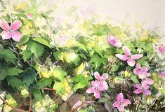 Влюбленный в природу Abe Toshiyuki | Заметки Сакумы