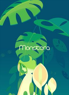 Monstera by mintchoco on deviantART