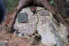 Kreuze erinnern an die Verunglückten. Dory, Plants, Plant, Planets