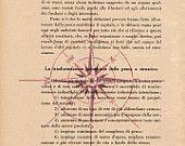 Pag.66, Rosa dei venti, colore polvere rossa. Posizione pagina: verticale