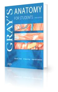 GRAY'S ANATOMY FOR STUDENTS FLASH CARDS 3RD EDITION ( PDF ) Download
