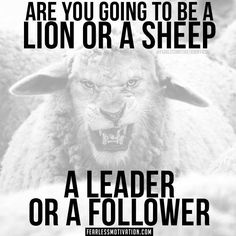 30 Motivational Lion Quotes In Pictures - The Best Lion Picture Quotes on Courage, Strength and determination to succeed. Motivational Quotes For Success, Positive Quotes, Inspirational Quotes, Motivational Board, Citation Lion, Minions, Lion Quotes, Volleyball Quotes, Warrior Quotes
