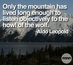 """Only the mountain has lived long enough to listen objectively to the howl of the wolf."" Aldo Leopold"