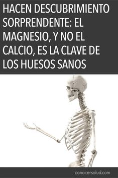 Hacen descubrimiento sorprendente: el magnesio, y NO el calcio, es la clave de los huesos sanos #salud #bienestar Health Fitness, Grace Kitchen, Business, Natural, Tips, Quotes, Frases, Good Advice, Health Tips