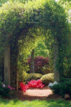 Beautiful Secret Garden ✿⊱╮