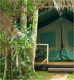 Kibale Forest Camp, Uganda (Kibale Forest National Park & Fort Portal)