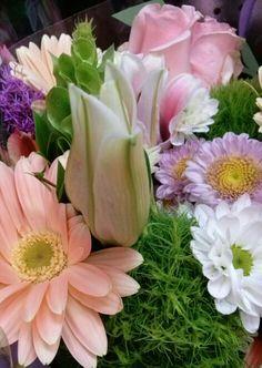Gerberas, lilis etc.