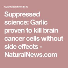 Suppressed science: Garlic proven to kill brain cancer cells without side effects - NaturalNews.com