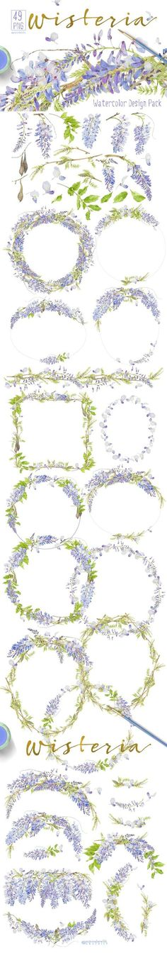 Wisteria - Design Pack by watercolorwild.graphics on @creativemarket
