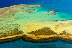arial views of coral reefs   Aerial view, New Caledonia Barrier Reef (a UNESCO World Heritage site ...